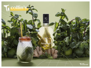 Ti-Collin's