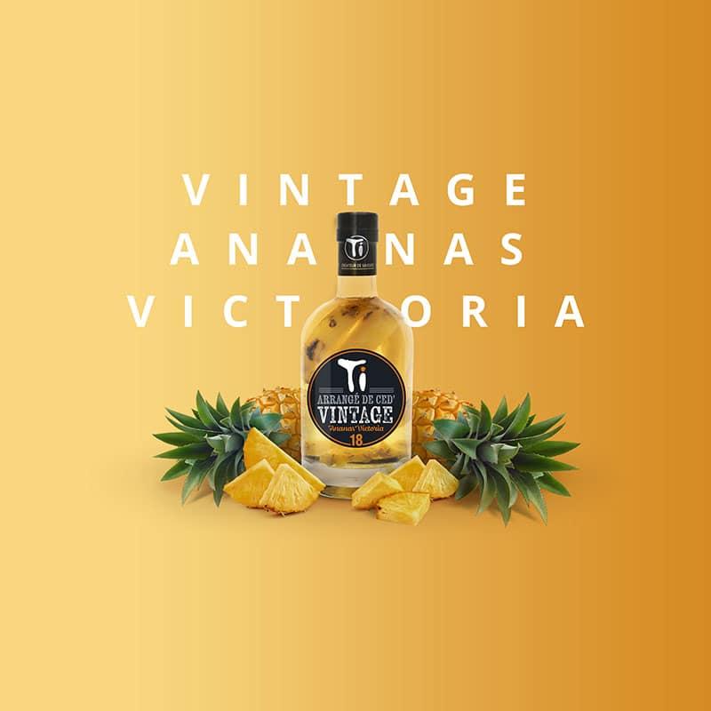 Ti Arrangés de Ced' VINTAGE Ananas Victoria